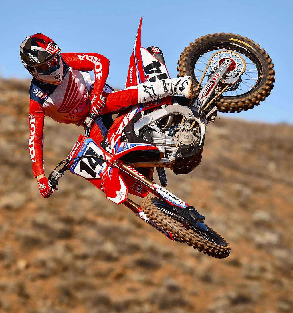 Seely Whips